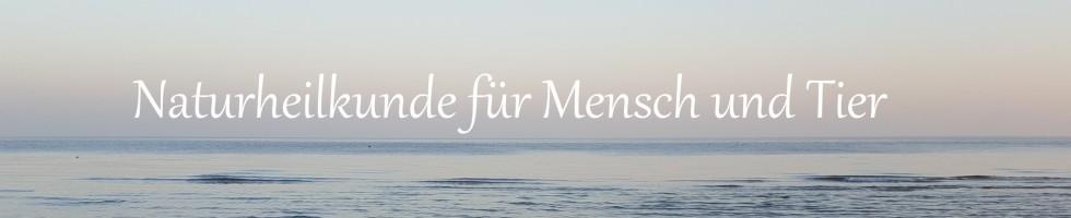 Naturheilkunde-Beratung in Kiel