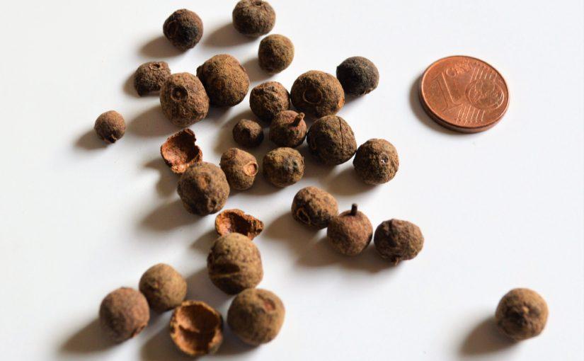 Piment – Nelkenpfeffer